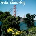 Poetic Shutterbug