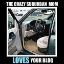 the crazy suburban mom :