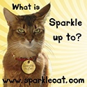 Sparkle :  Award-winning author, advice columnist, supermodel - and  cat!