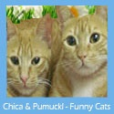 Chica & Pumuckle
