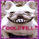 Foolsville